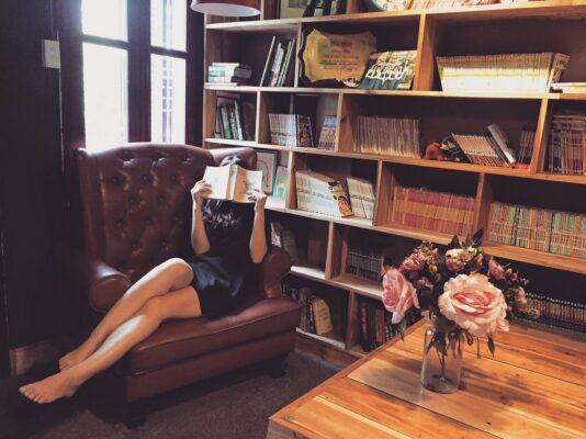 Utazásaim a könyvek által, utazásaim a fotelből